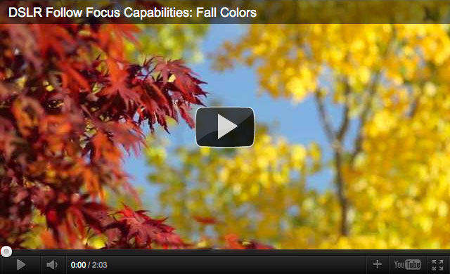 DSLR Follow Focus Capabilities: Fall Colors Demo