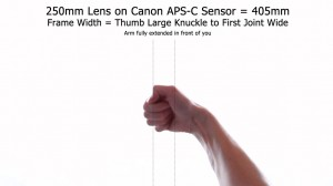 250mm Lens - Frame Width APS-C Using Hands