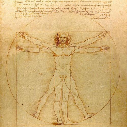 Da Vinci Vitruve Luc Viatour - Human Body Visual Dimensions